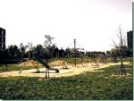 Arrestati due giovani che spacciavano nei pressi di un parco giochi a Catanzaro Lido