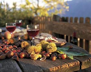 Camigliatello: Donnici Doc si aggiudica il premio Miglior Vino Novello di Calabria