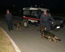 Catanzaro: operazione decollo 27 arresti per 'ndrangheta e narcotraffico