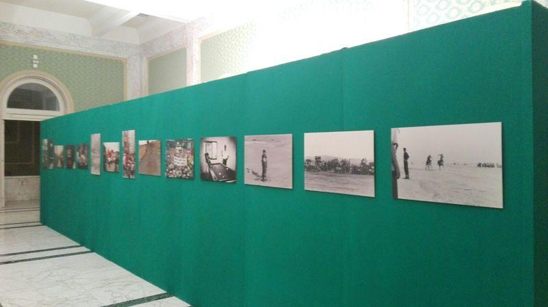 A Reggio Calabria arti a confronto con l'Horcynus Festival