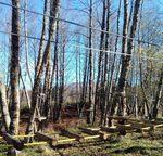 Pronto il Parco Avventura a Forge, Gambarie d'Aspromonte