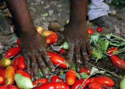 Immigrazione: clandestini ridotti in schiavit�, 22 arresti tra Calabria, Puglia e Sicilia